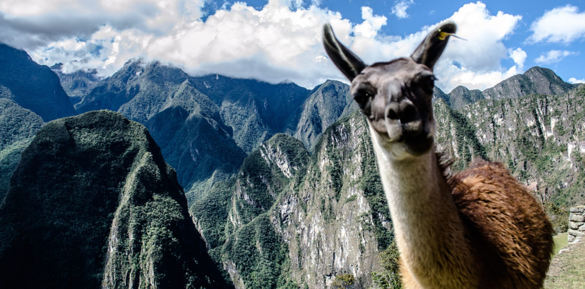 Todo lo que debes saber para ingresar a Machu Picchu y Wayna Picchu